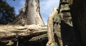 Wietnam i Kambodża - grudzień 2014