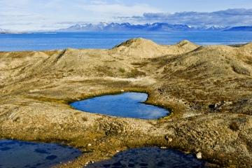 Spitsbergen - Brama Arktyki