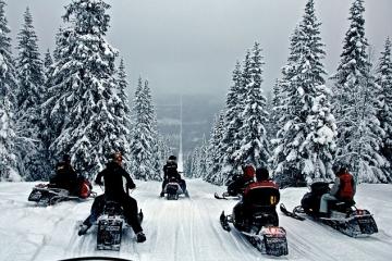 Norwegia - safari na skuterach śnieżnych