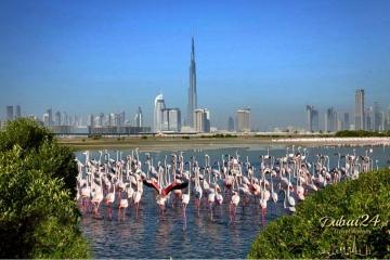 Dubaj - 4 dniowy wyjazd incentive