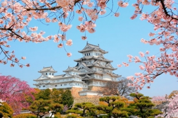 Japonia - Kraj Kwitnącej Wiśni
