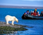 Spitsbergen - tydzień na krańcu Północy! - Dzień 4