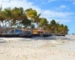 Słoneczna Kuba na wyciągnięcie ręki - Dzień 10 - Wyokrętowanie, zwiedzanie Parku Narodowego Montemar, wylot do Polski