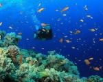 Bali - zaczarowana wyspa - Dzień 5 - CAŁODNIOWA WYCIECZKA NA WSCHODNIE BALI LUB NURKOWANIE