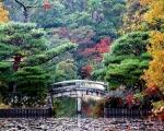Japonia - Kraj Kwitnącej Wiśni - Dzień 4