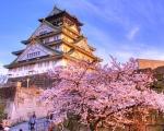 Japonia - Kraj Kwitnącej Wiśni - Dzień 6