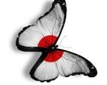 Japonia - Kraj Kwitnącej Wiśni - Dzień 7